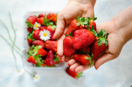 woman's hands: Womans hands holding Fresh ripe strawberries and berries with Chamomile flowers in plastic box on blue background Stock Photo