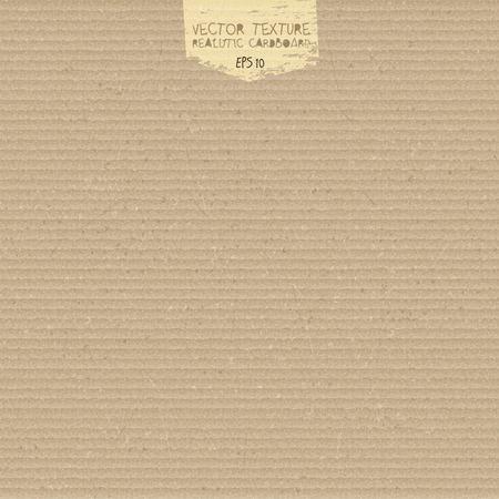 cardboard texture: Vector cardboard texture. Realistic cardboard background. Paper