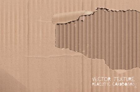 cardboard texture: Vector cardboard texture. Realistic torn cardboard background.
