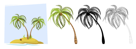 Tropical palm trees. Illustration of a palm tree, black silhouettes and outline contours isolated on white background. Vector Çizim