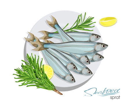 Sprat sketch vector fish icon. Isolated marine atlantic ocean sprats with rosemary and lemon on a plate. Isolated symbol for seafood restaurant sign or emblem, fishing club or fishery market