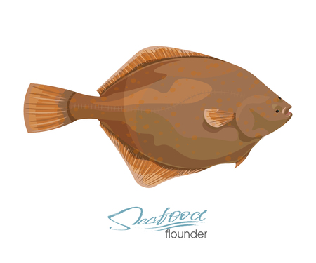 Olive Flounder. Vector illustration sea fish isolated on white background. Icon badge flounder fish for design seafood packaging and market.