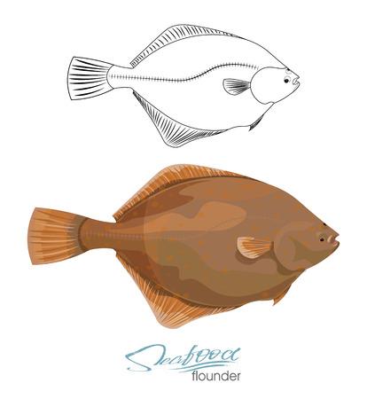 Olive Flounder. Illustration sea fish isolated on white background.