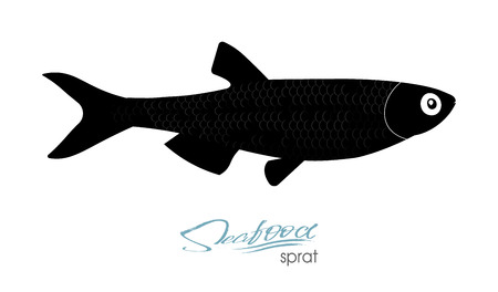 Sprat sketch vector fish icon. Isolated marine atlantic ocean sprats.