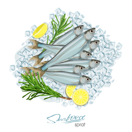 Sprat sketch vector fish icon. Isolated marine atlantic ocean sprats with rosemary and lemon on ice cubes. Isolated symbol for seafood restaurant sign or emblem, fishing club or fishery market