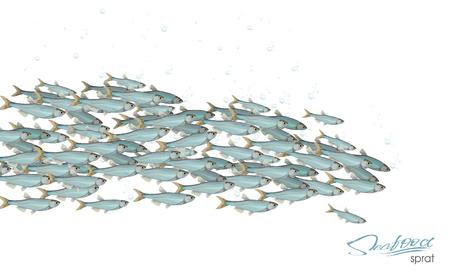 Scuola di pesce illustrazione vettoriale per intestazione, web, stampa, carta e invito. Molte aringhe o merluzzi che si muovono nel mare.