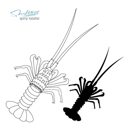 Silhouette spiny lobster. Linear silhouette spiny lobster. Spiny lobster badge for design seafood packaging and market, food packaging or underwater sea animal themed design. Vector illustration. Stock Vector - 102250796