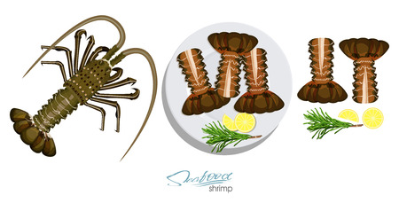 Meat spiny lobster with rosemary and lemon on the plate.Vector illustrationin cartoon style. Spiny lobster, lemon, rosemary separately on a white background. Vector illustration Illustration