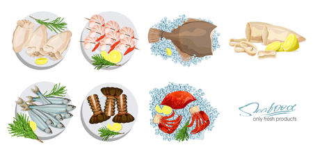 Seafood in cartoon style. Seafood platter set squid, cuttlefish, crab, shrimp, spiny lobster, flounder fish, sprat on ice cubes isolated on white background. Icons. Vector illustration