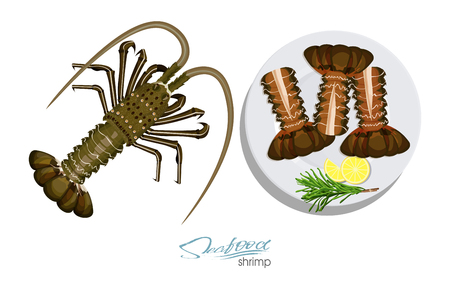 Meat spiny lobster with rosemary and lemon on the plate.Vector illustrationin cartoon style. Spiny lobster isolated on white background. Vector illustration