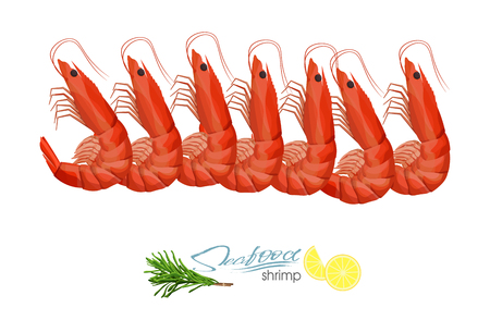 Fresh prawns. Shrimp vector illustration in cartoon style isolated on white background. Seafood product design. Inhabitant wildlife of underwater world. Edible sea food. Vector illustration 向量圖像