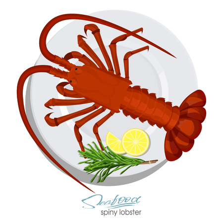 Spiny lobster with rosemary and lemon on the plate in cartoon style. Fresh spiny lobster. Seafood product design. Inhabitant wildlife of underwater world. Edible sea food. Vector illustration 矢量图像