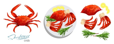 Meat crab with rosemary and lemon on the plate.Vector illustrationin cartoon style. Seafood product design. Crab, lemon, rosemary separately on a white background. Edible sea food. Vector illustration Illustration