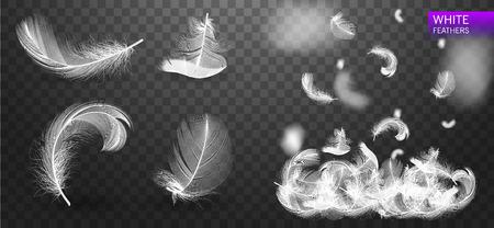 Set of isolated white fluffy feathers on transparent background. Falling twirled realistic feathers isolated on a transparent background vector illustration Ilustração