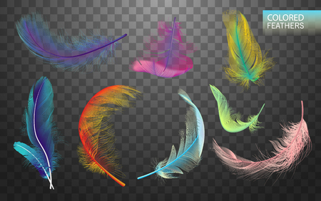 Set of isolated falling colored fluffy twirled feathers on transparent background in realistic style. Light cute feathers design. Elements for design vector ilustration