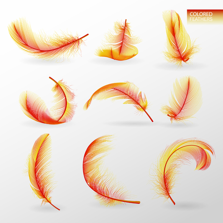 Set of isolated falling colored fluffy twirled feathers on transparent background in realistic style. Light cute feathers design. Elements for design vector illustration Illustration