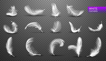 Satz von isolierten fallenden weißen flauschigen wirbelnden Federn auf transparentem Hintergrund in realistischer Artvektorillustration