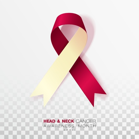 Head and Neck Cancer Awareness Month. Burgundy and Ivory Color Ribbon Isolated On Transparent Background. Vector Design Template For Poster. 일러스트