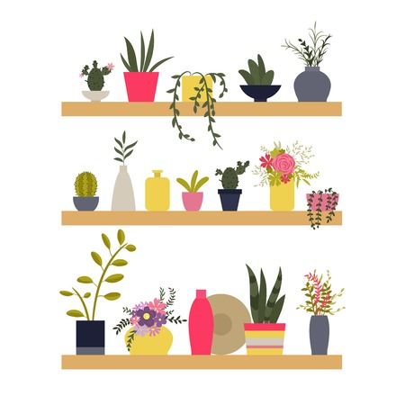 Vector illustration. Shelves with plants and vases of flowers. The elements for graphic design. Flat style. Illustration