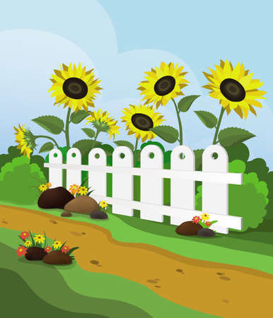 hedge trees: Rural landscape with sunflowers and white fence. Stock Photo