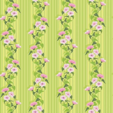 bindweed: Green summer wallpaper with flowering pink bindweed Illustration