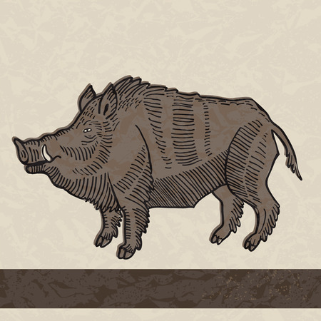 linocut: Wild boar in vintage style Illustration