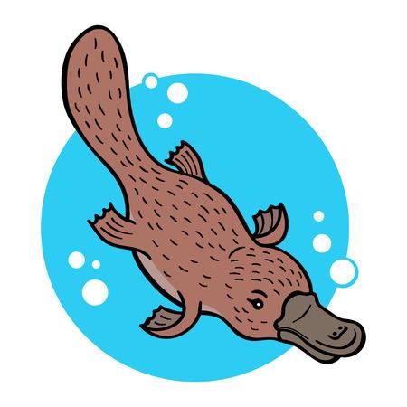 platypus: Cartoon platypus or duckbill; vector illustration