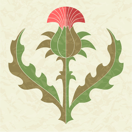 Decorative thistle, floral emblem of Scotland, decorative element