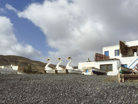 Fuerteventura: swan-shaped pedal boat on the black beach of Pozo Negro in lava beach