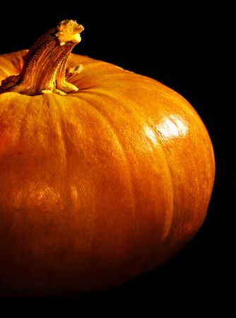 The close up view of the pumpkin photo