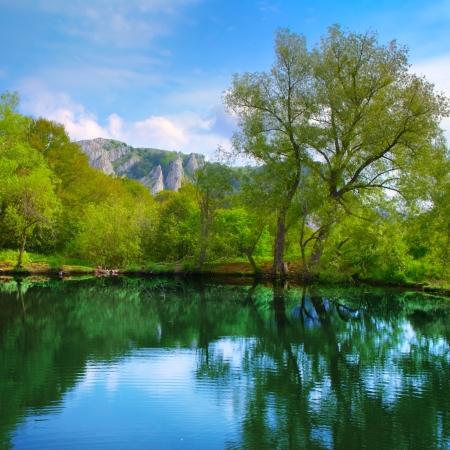 Landschaft mit See, Wald, Berg und blauer Himmel
