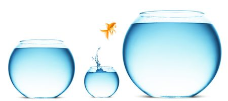 A goldfish jumping out of the water to escape to freedom. White background. Stock Photo - 5888777