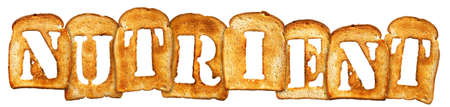 isolated Letter of Toast alphabet on white