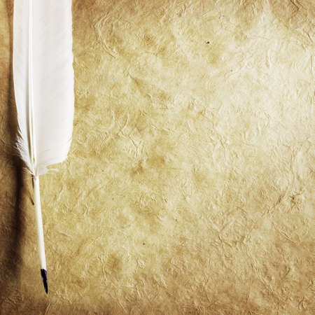 feather on a background of the empty form for the letter photo