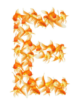 gold fish alphabet letter isolated on white photo