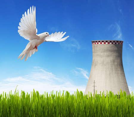 witte duif, koeling-toren op blauwe hemel