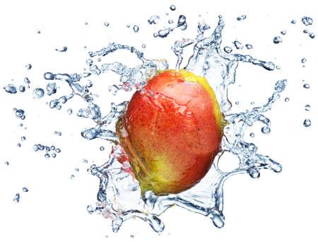 mango fruta: Mango en spray de agua. Mango jugoso con splash sobre fondo blanco