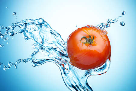 Tomato in spray of water. Juicy tomato with splash on background photo