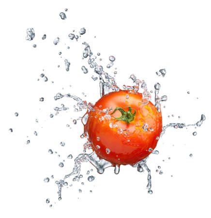 Tomato in spray of water. Juicy tomato with splash on white background