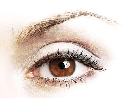 woman eyeball: Women eye, close-up, painted brown Stock Photo