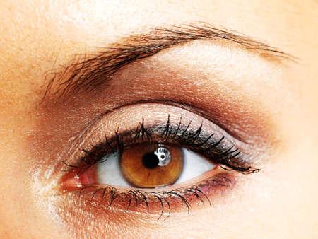 ojos marrones: Ojo de la mujer, primer plano, pintados de marr?n Foto de archivo