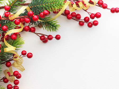 Christmas Pine and Berries on paper photo