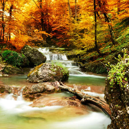 cascade: Autumn creek woods with yellow trees foliage and rocks in forest mountain. Stock Photo