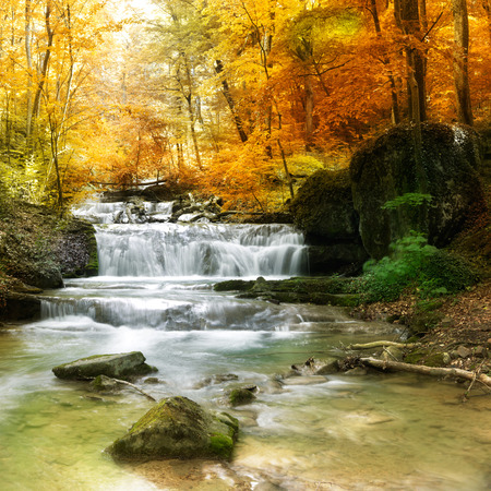 Autumn creek woods with yellow trees foliage and rocks in forest mountain. Banco de Imagens
