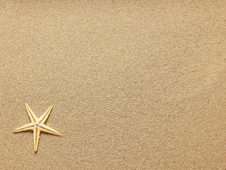 Starfish on Beach Sand. Close up Archivio Fotografico