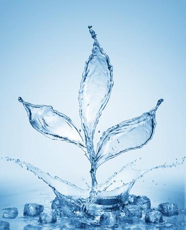 Splash of blue water plant. Background