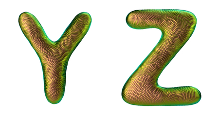 Letter set Y, Z made of realistic 3d render natural gold snake skin texture. Collection of snake skin texture with gold color symbol isolated on white background
