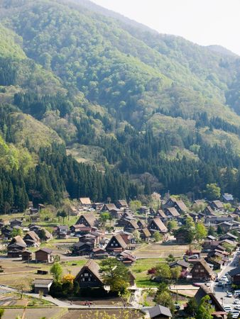 thatched: Thatched roof houses in Shirakawago, Japan