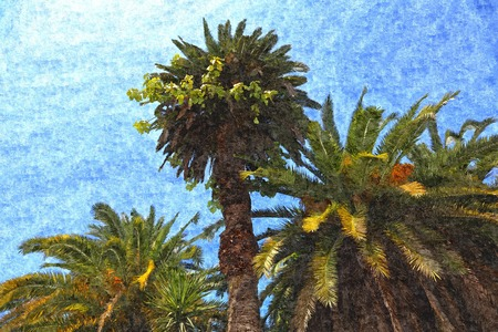 three palm trees: Art illustration of three palm trees painted in watercolor