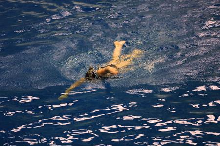 nataci�n sincronizada: Los equipos femeninos del Campeonato de nataci�n sincronizada en la piscina cubierta